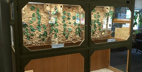 Hospice display