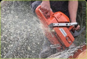 Chainsaw product sample