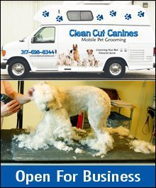 Dog Grooming - Greenfield, IN - Clean Cut Canines
