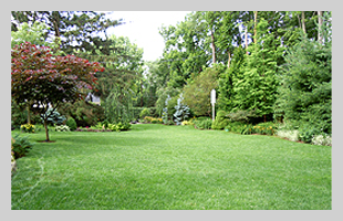 Seeding | Dayton, OH | Oakwood Lawn & Landscaping Co | 937-293-9693