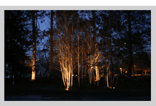Lanscape Lighting | Dayton, OH | Oakwood Lawn & Landscaping Co | 937-293-9693
