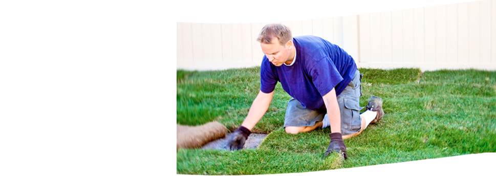Shrub removal | Dayton, OH | Oakwood Lawn & Landscaping Co | 937-293-9693