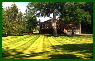 Grounds Maintenance | Louisville, KY | Big John's Lawn Care LLC | 502-287-0287