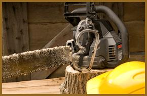 Tree Removals - Rockford, IL - Soppa's Tree Service, Inc