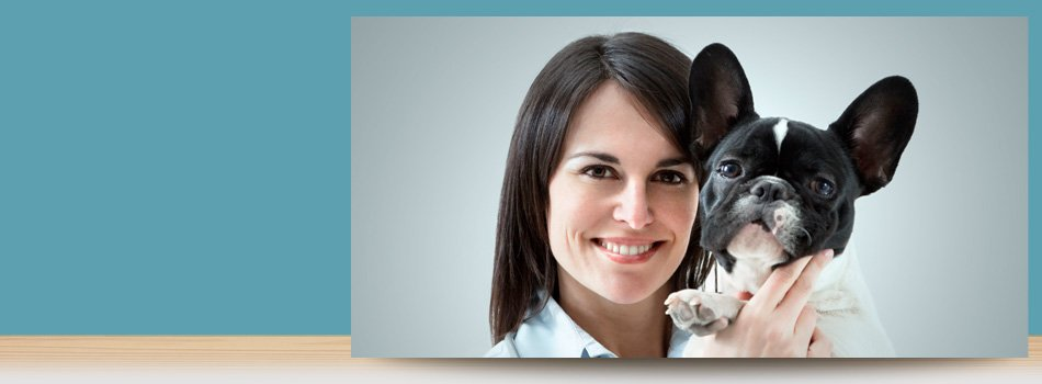 Routine Pet Surgery | Forked River, NJ | Veterinary Associates | 609-693-1093