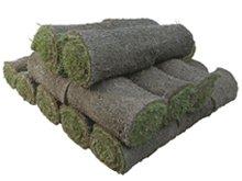 Turf Grass - Stockbridge, MI - American Beauty Turf Nurseries