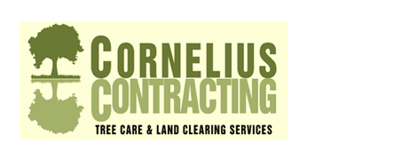 tree care | New Braunfels, TX | Cornelius Contracting  | 830-629-3662