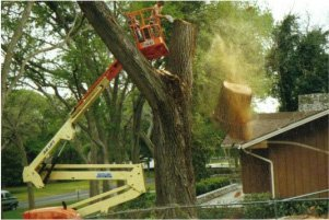 lumber | New Braunfels, TX | Cornelius Contracting  | 830-629-3662