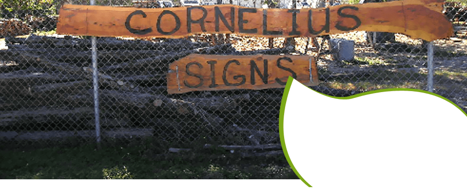 land clearing | New Braunfels, TX | Cornelius Contracting  | 830-629-3662