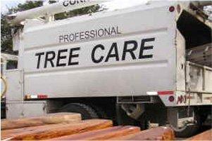 lumber yard | New Braunfels, TX | Cornelius Contracting  | 830-629-3662