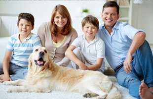 Carpet and upholstery cleaning | Matteson, IL |  | 708-362-2011