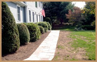 dethatching | Bristol, CT | Martin Landscaping & Horticultural Services LLC | 860-585-6570