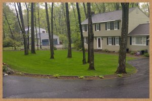 fall and spring cleanup | Bristol, CT | Martin Landscaping & Horticultural Services LLC | 860-585-6570