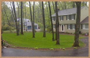 lawn care | Bristol, CT | Martin Landscaping & Horticultural Services LLC | 860-585-6570