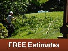 Tree Services - Rochelle, IL - A-1 Tree & Stump Removal
