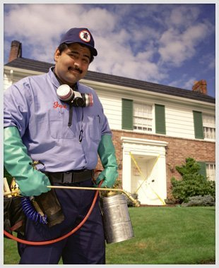 Man holding insecticides