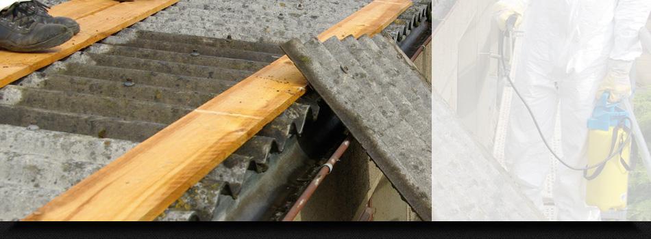 Asbestos Clean Up Services