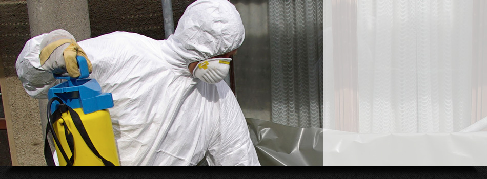 Asbestos Removal Services by Our Professionals
