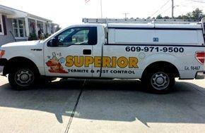 Car of superior termite insecticide