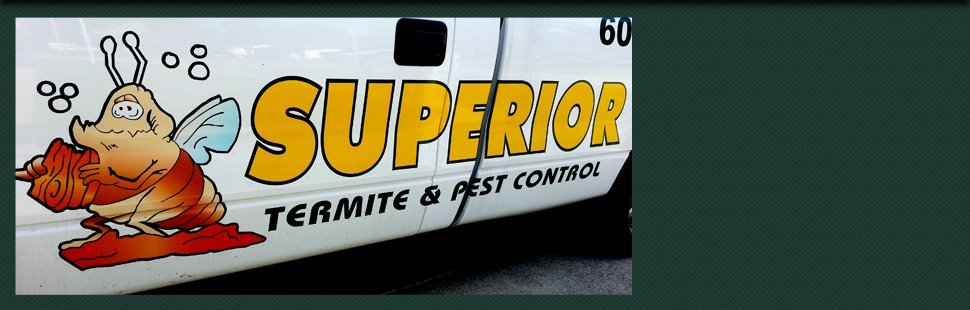 Contact Superior Termite Pest Control Inc Bayville Nj 609 971 9500
