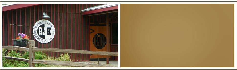 Bar   Saint George, KS   Black Jack Hills   785-494-2707