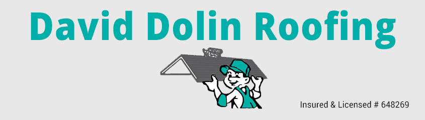 David Dolin Roofing - logo