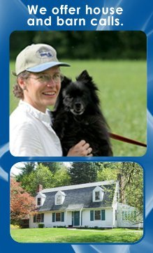 Veterinary Clinic - Cornwall Bridge, CT - Housatonic Veterinary Care