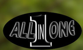 All-In-One Tree Care & Landscaping Corp.