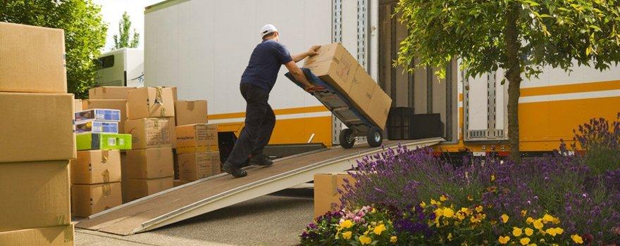 Man loading boxes