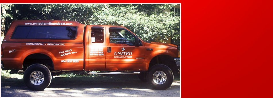 Pest Treatments | Lexington Park, MD | A United Termite and Pest | 301-862-0001