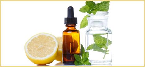 Herbs   Tustin, CA   Ivy's Bridge To Better Health   714-832-0750