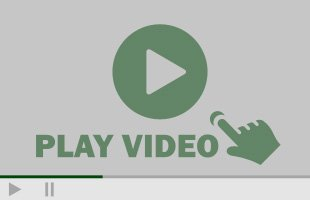 Toms River Tree Service Video