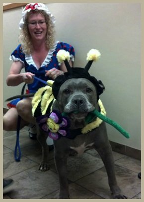 Lady and a dog in a costume