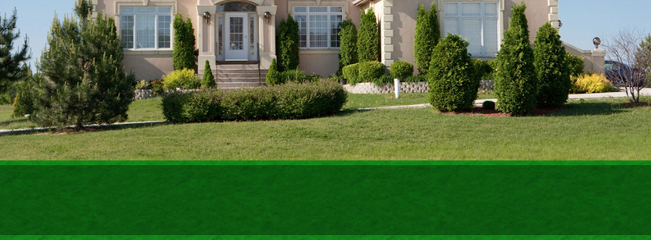 Garden center | Plains, PA | Greenwood Nursery & Landscaping LLC | 570-829-3752