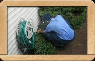 pest control | Burnsville, MN | Bob's Pest Control | 952-212-1196