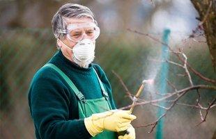 Tree Removal Company   Browns Mills, NJ   Reynolds & Sons Tree Service   609-893-9329