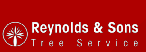 Tree Removal Company | Browns Mills, NJ | Reynolds & Sons Tree Service | 609-893-9329