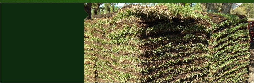 Sod | Citrus County, FL  | Connolly's Sod and Nursery | 352-634-1625