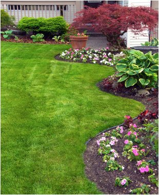 Gardening Services | Citrus County, FL  | Connolly's Sod and Nursery | 352-634-1625