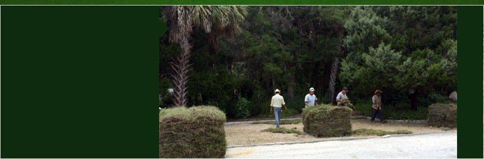 Sod | Citrus County, FL | Connolly's Sod and Nursery | 352-634-1625
