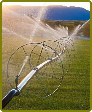 Irrigaiton systems | Landisville, NJ | Monroy & Sons | 856-364-3938