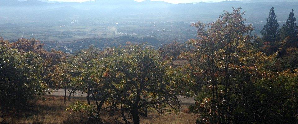 Oregon top view