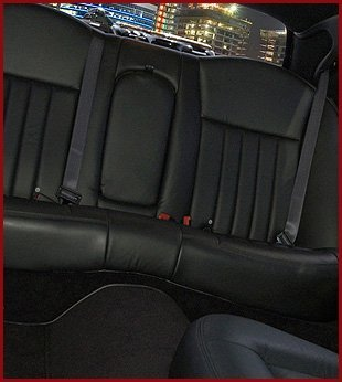 Luxurios seat cover