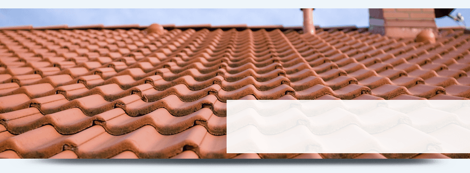 Picture of tile roofs
