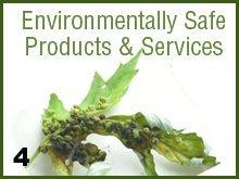 Tree Services - Red Cloud, NE - Thomas Tree Service