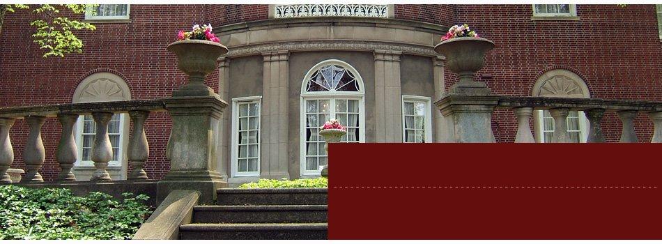 The Mansion snapshot