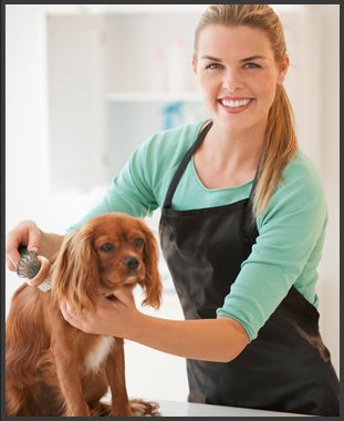 Employees | Emporia, KS | Top Dog Grooming Salon | 620-342-3647