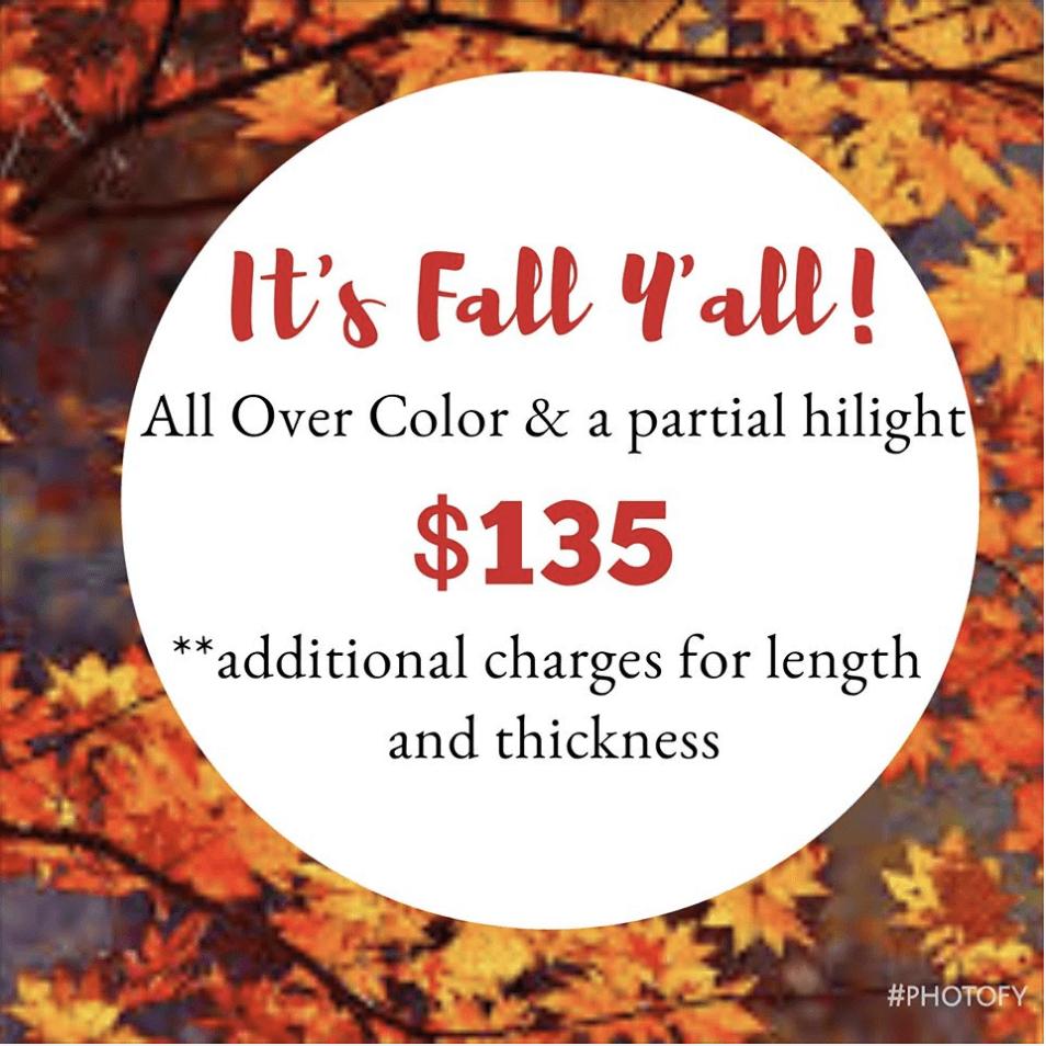 Fall Hair Special