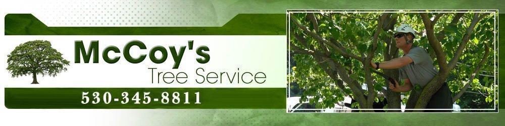 Arborist Butte Valley, CA - McCoy's Tree Service
