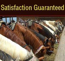 Livestock Supplies Leavenworth, KS - Waters Feed Company LLC